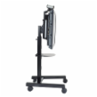 "Chief 42""-71"" Universal Flat Panel Mobile Cart, Black"